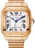 Cartier WGSA0008