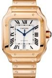 Cartier WGSA0007